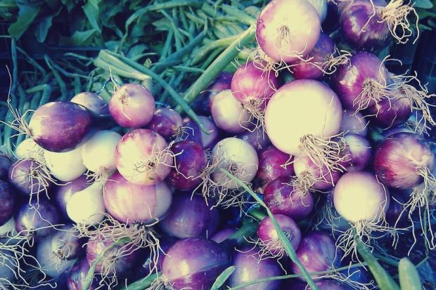 Spring Onions - Petworth Market