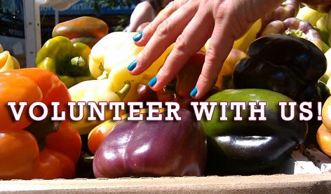 Volunteer with Petworth Market