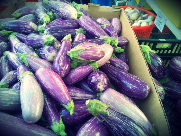 shlangel farm eggplant